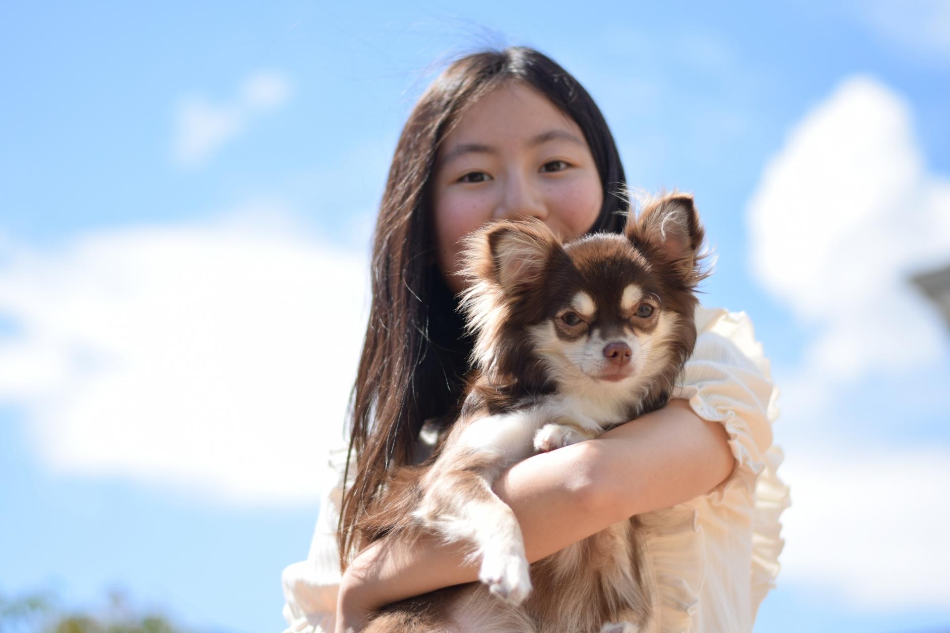 愛犬の信頼を取り戻す方法について紹介します